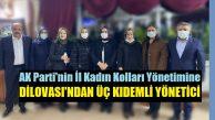AK Parti İl Yönetimine, Dilovası'ndan üç kıdemli yönetici girdi!